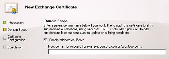 Exchange 2010 FAQ: Are Wildcard SSL Certificates Supported?